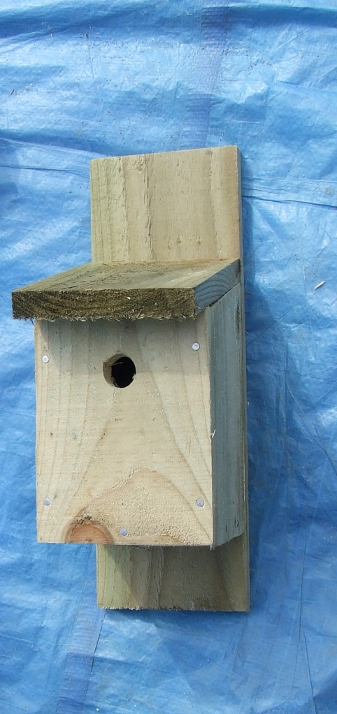 Bird Box                        Photo: Artemisia