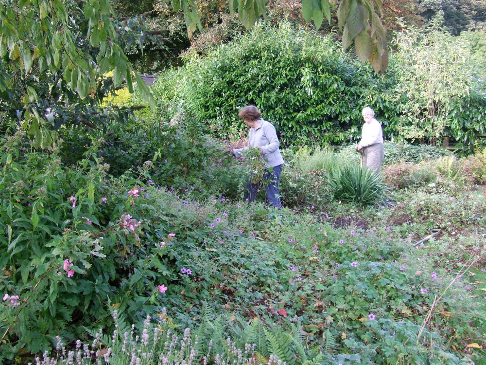 Spring and Summer at Chadkirk: some dates for your diary