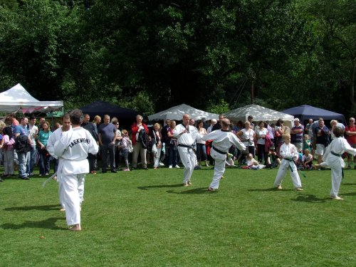 Ki Taekwondo demonstration: people gather to watch their moves. Photo: Artemisia