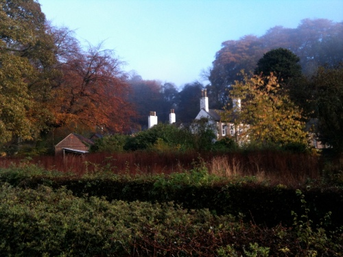Chadkirk Farm and hedgerows in autumn light
