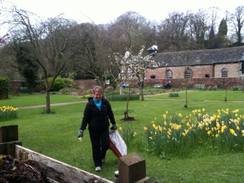 With a spring in their step,  Friends of Chadkirk tidy up the garden and prepare the Walled Garden for future growth.