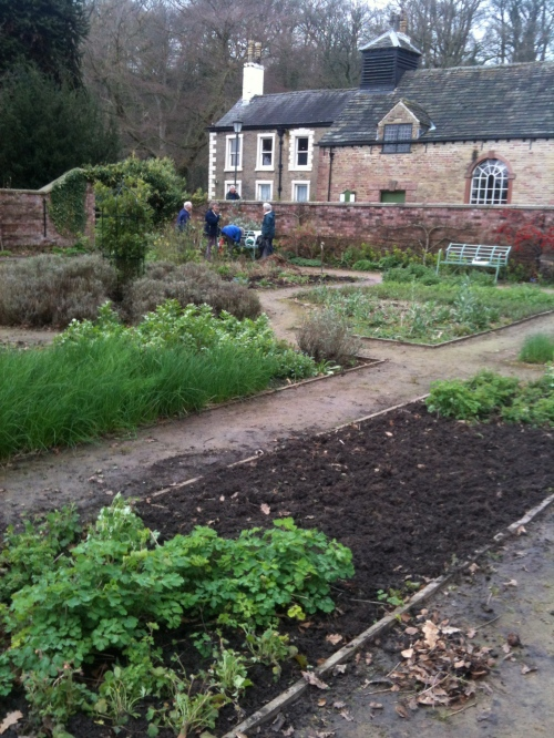 This bed has been cleared and dug over. Poppy seeds will be planted to flower during the summer.