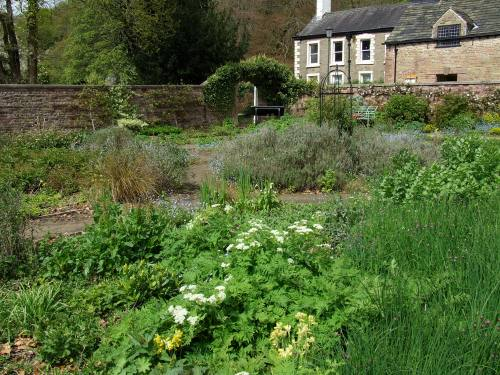 The Herb Beds, Walled Garden, Chadkirk