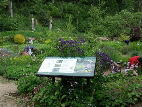 June Gardening Team