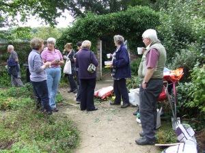 Volunteers enjoy a tea break. Photo: Artemisia